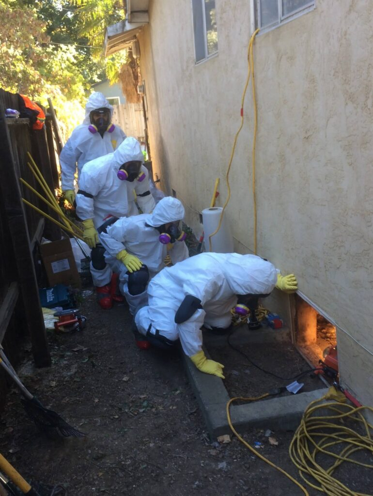 4+crew+PPE+Pesticide+Decon+Entry+in+Crawl+Space-1920w